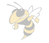 Faded logo for Lee Senior High School in Sanford, NC. Features a yellow jacket insect.